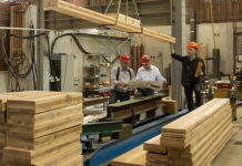 CLT experts to develop new fire safety compliance framework
