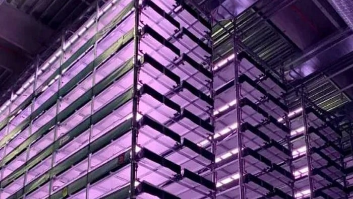 Europes largest vertical farm completes first phase