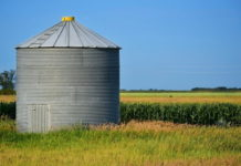5 Important Safety Tips When Working in Grain Silos